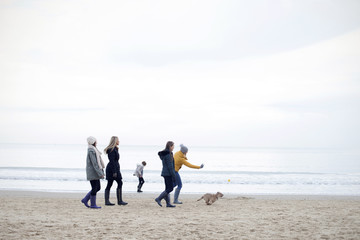 Group Of Friends Enjoying Winter Walk On Beach With Dog