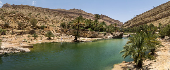 oasis in the Oman heart