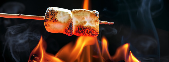 Roasting Marshmallows Over Campfire Horizontal Banner