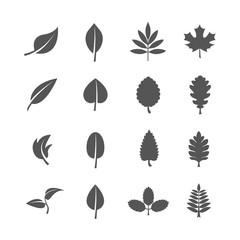 Wall Mural - Leaves vector icons set