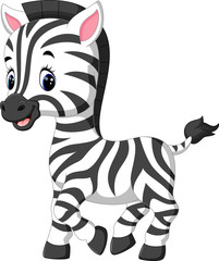 illustration of cute zebra cartoon