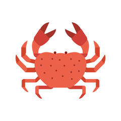 Red Crab Sea Creature Illustration