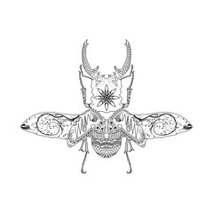 Beetle vector. Black icon on white background.