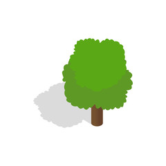 Fluffy tree icon, isometric 3d style