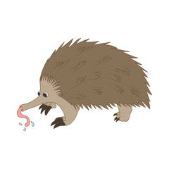 Anteater icon, cartoon style