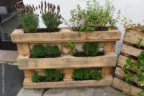 Orto orto verticale erbe aromatiche coltivazione for Idee per realizzare una fioriera