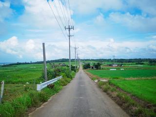 小浜島の風景