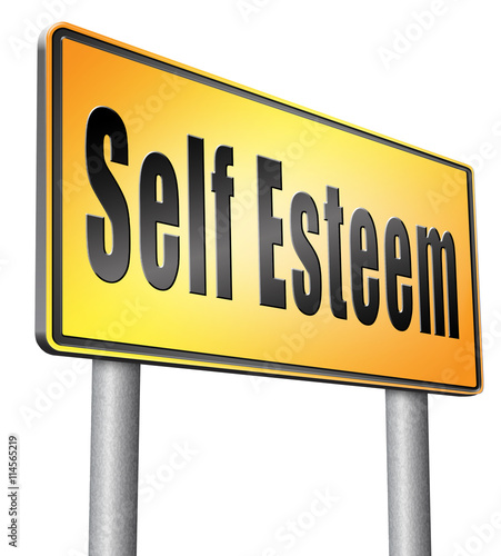 self esteem and respect Self-esteem, self-pride -- (a feeling of pride in yourself) the word esteem originally comes from the latin aestimare which means to: value, rate, weigh, appraise or estimate i think this definition is the closest to how i would define self esteem.