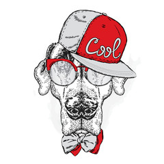 Pointer. Beautiful dog wearing a cap, sunglasses and tie. Vector illustration.