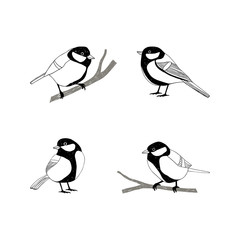 Birds sketch set. Tomtit.