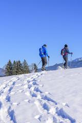 Ausflug mit Schneeschuhen in die winterliche Natur