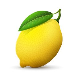 Fresh lemon fruit close up. Lemon with leaf isolated on white background. Qualitative vector illustration about lemon, food, agriculture, fruits, cooking, gastronomy, etc
