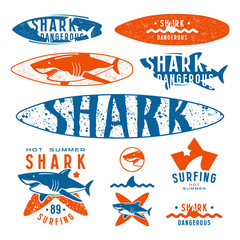 Graphic design with the image of shark for surfboard and t-shirt