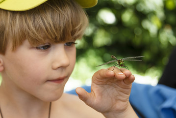 Kid looking at the dragonfly on his hand