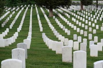 Printed roller blinds Cemetery Arlington National Cemetery