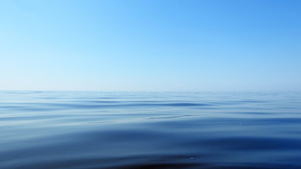 Macro Sea photo.