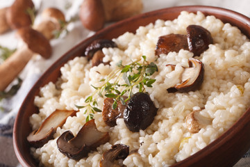 risotto with porcini mushrooms in a bowl close-up. horizontal