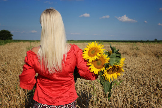 Blond women relaxing in wheat field with bouquet of sunflowers in arms