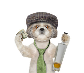 dog having fun and drinking alcohol
