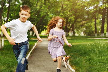 Boy and girl run in a park with a puppy jack russell terrier.