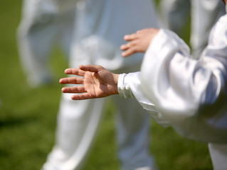 hand of martial arts master Tai Chi with followers