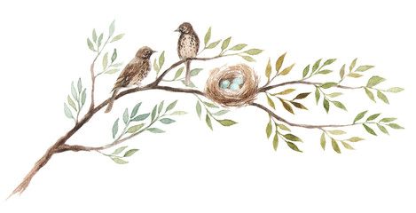 Two birds with a nest on the tree branch. Blue eggs in nest of Song Thrush. Hand-drawn watercolor illustration. Fototapete