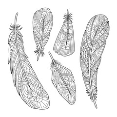 Hand drawn vintage feathers set in vector. Adult coloring page. Decorative element for T-shirt emblem, tattoo, logo. Black and white zentangle boho feather.
