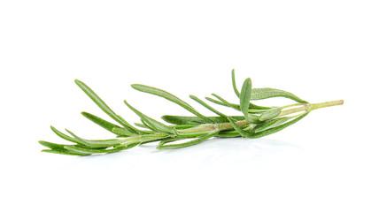 Rosemary on white background.