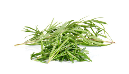 Rosemary on white background.