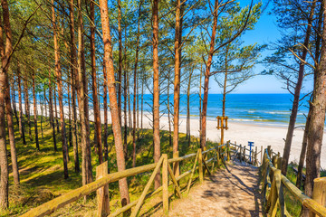 Fototapete - Path in forest to beautiful beach in Lubiatowo coastal village, Baltic Sea, Poland