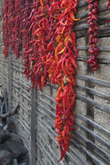 Red hot chili peppers on the wall