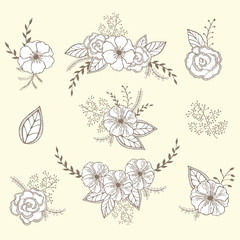 Vector floral set. Graphic collection with leaves and flowers, drawing elements.