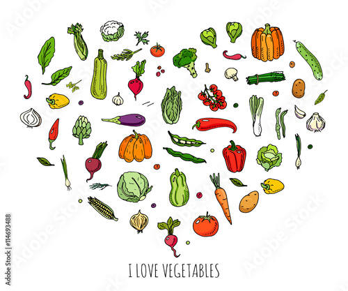 quothand drawn doodle vegetables icons set vector