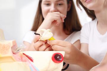 Nastolatkowie na lekcji biologii. Budowa ucha