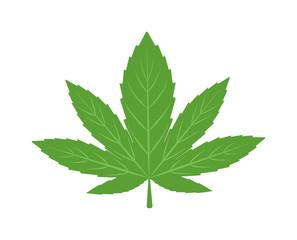 Cannabis marijuana hemp leaf flat icon vector green medicine weed vector herb. Addiction medical narcotic cannabis marijuana leaf. Nature symbol illegal hashish ganja cannabis marijuana leaf.
