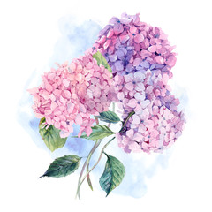 Watercolor Greeting Card with Hydrangea