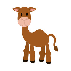 Cute animal concept represented by camel icon. isolated and flat illustration