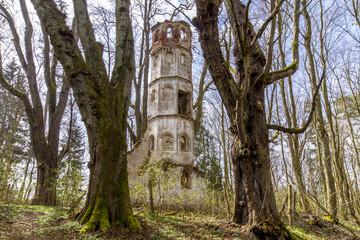 Bäume umrahmen die Kirchturmruine im Wald