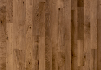background of Birch wood surface