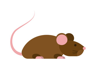 Gray cute mouse isolated on white background. Vector rodent character, mammal gray cute mouse isolated. Fur pest domestic paw small mouse isolated. Hairy whisker wildlife animal character.