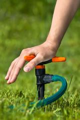 hand installing sprinkler for irrigation