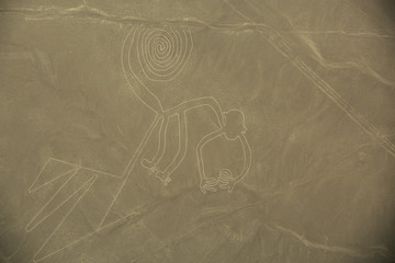 Nazca Lines,  The Monkey