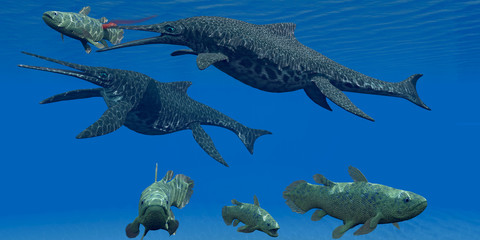 Triassic Shonisaurus Marine Reptile - A Coelacanth fish becomes prey for a Shonisaurus Ichthyosaur marine reptile during the Triassic Period.