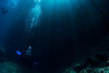 Wall Mural - Sunlight to Underwater