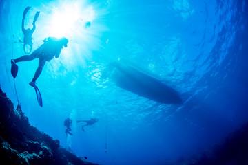 Wall Mural - Boat diving