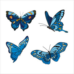 Hand-drawn blue butterfles on white background