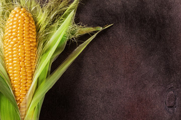 Wall Mural - Background of bright corn leaves painted on wooden backdrop.