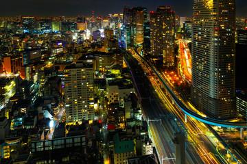 View of Tokyo city at night.