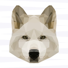 Abstract polygonal geometric white wolf portrait