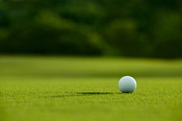 selective focus. white golf ball near hole on green grass good f